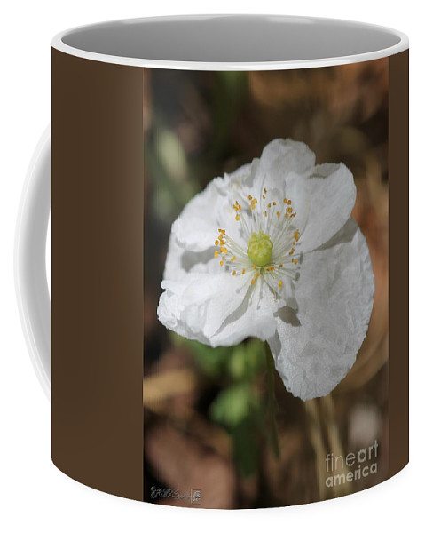 Mccombie Coffee Mug featuring the photograph Poppy From The Angel's Choir Mix by J McCombie