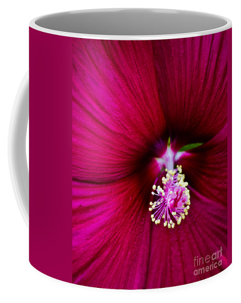 Poppy Coffee Mug featuring the photograph Poppy by Scott Hervieux