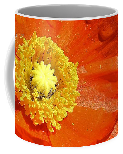 Flora Coffee Mug featuring the photograph Poppy Up Close by Bruce Bley