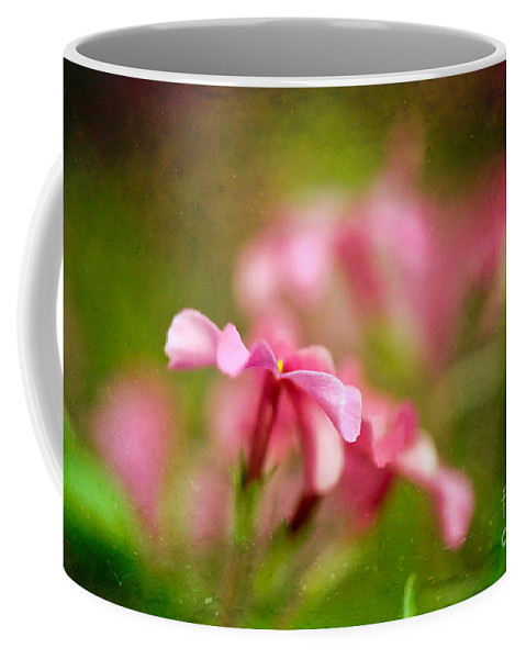 Flox Coffee Mug featuring the photograph Popsicle Pink by Lois Bryan