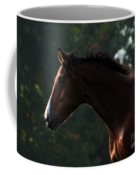 Horse Coffee Mug featuring the photograph Portrait Of A Horse by Angel Ciesniarska