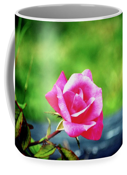 Portrait Coffee Mug featuring the photograph Portrait Of A Rose by Karen Majkrzak
