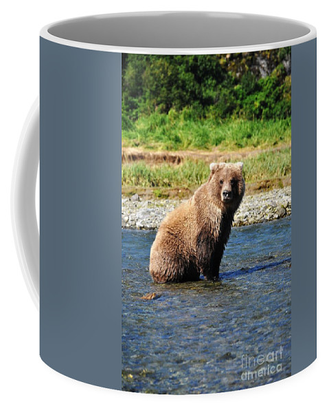 Brown Bear Coffee Mug featuring the photograph Posed Perfection by Deanna Cagle
