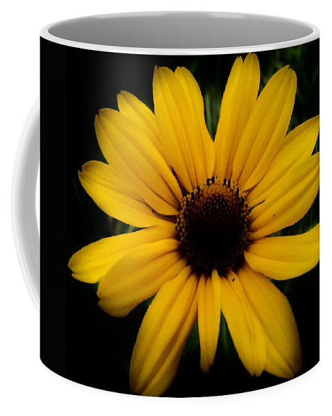 Prairie Coreopsis Coffee Mug featuring the photograph Prairie Coreopsis by Eric Noa