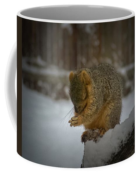 Animals Coffee Mug featuring the photograph Prayer Time by Ernie Echols