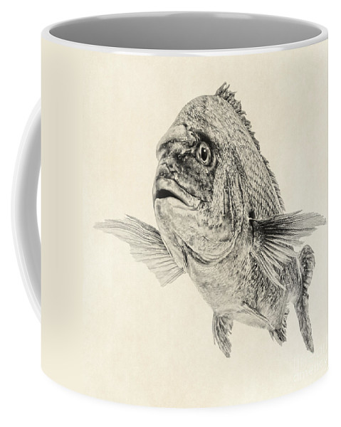 Fish Art Coffee Mug featuring the digital art Preoccupied by Olga Hamilton