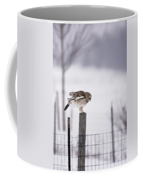Short Eared Owl Coffee Mug featuring the photograph Preparing To Fly As An Oil Painting by Tracy Winter
