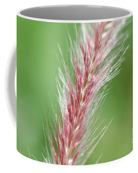 Nature Coffee Mug featuring the photograph Pretty In Pink by Bianca Nadeau