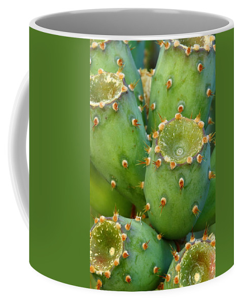 Cactus Coffee Mug featuring the photograph Prickly Pear Cactus 2am-105306 by Andrew McInnes