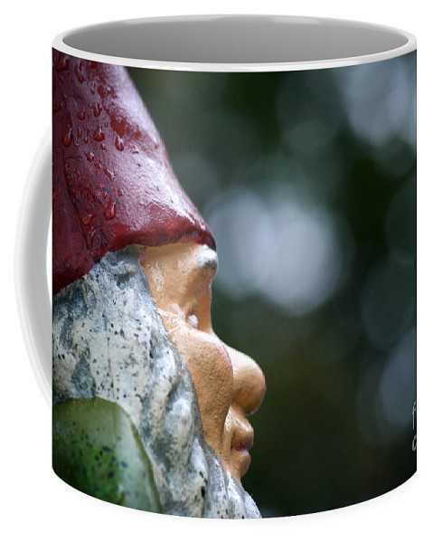 Beard Coffee Mug featuring the photograph Profile Of A Garden Gnome by Amy Cicconi