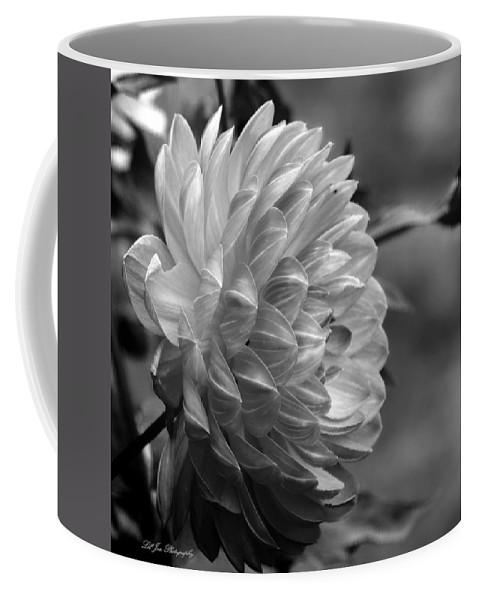 Pamela Howden Dahlia Coffee Mug featuring the photograph Profile Of A Pamela Howden Dahlia by Jeanette C Landstrom