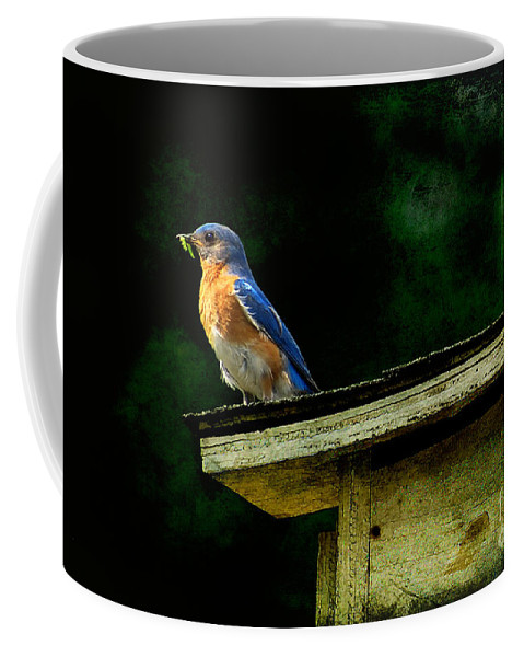 Lois Bryan Coffee Mug featuring the photograph Proud Provider by Lois Bryan