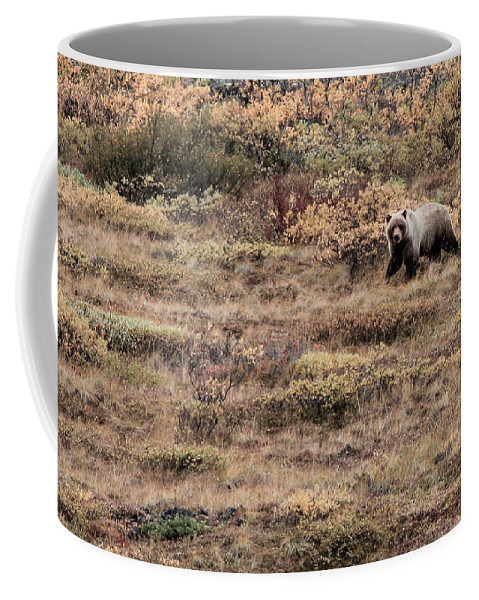 Grizzly Bear Coffee Mug featuring the photograph Prowl by Kevin Buffington