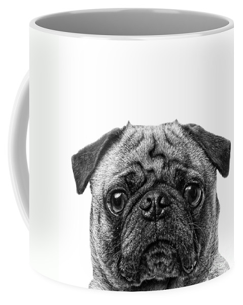Graphic Coffee Mug featuring the photograph Pug Dog Square Format by Edward Fielding