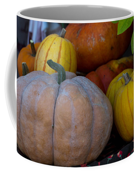 Pumpkin Coffee Mug featuring the photograph Pumpkin Harvest by Michael Moriarty
