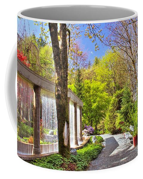 Waterfall Coffee Mug featuring the photograph Purifying Walk by Eti Reid