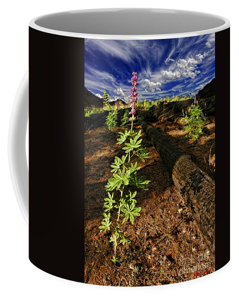 Coffee Mug featuring the photograph Purple Flower by Blake Richards