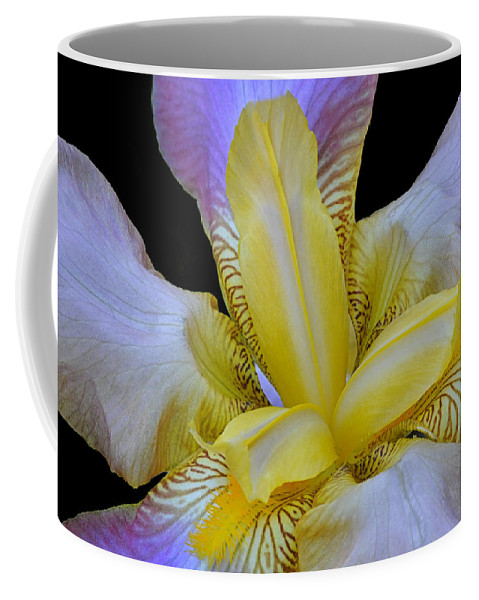 Iris Coffee Mug featuring the photograph Purple And Gold by Dave Mills
