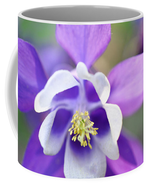 Spring Coffee Mug featuring the photograph Purple Columbine by Brittany Horton