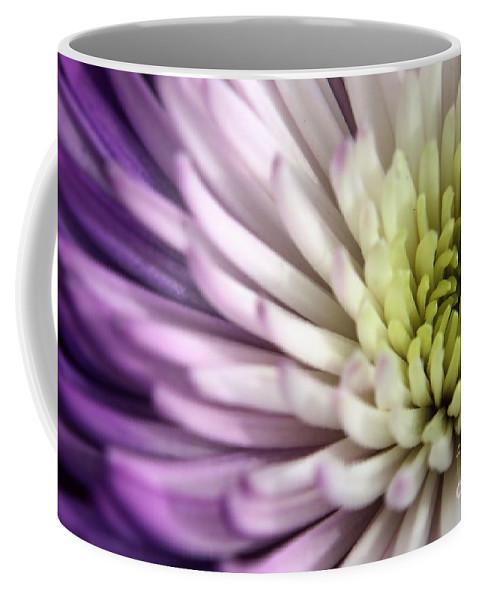 Dahlia Coffee Mug featuring the photograph Purple Dahlia by Kenny Glotfelty