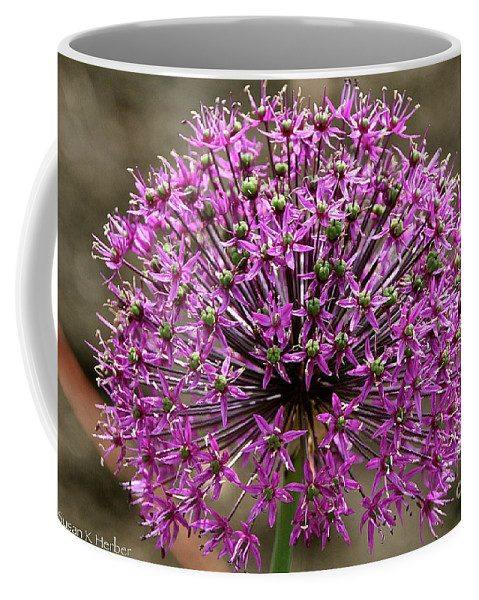 Flower Coffee Mug featuring the photograph Purple Explosion by Susan Herber