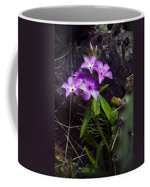 Texas Coffee Mug featuring the photograph Purple Flower At Enchanted Rock by Greg Reed