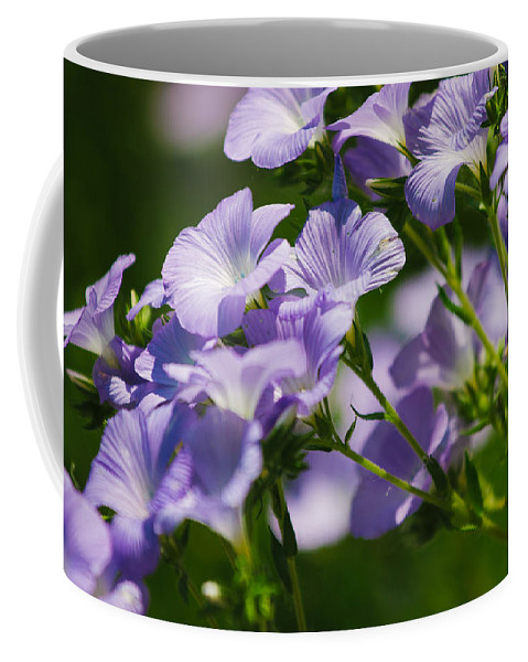 Flowers Coffee Mug featuring the photograph Purple Flowers by Pati Photography