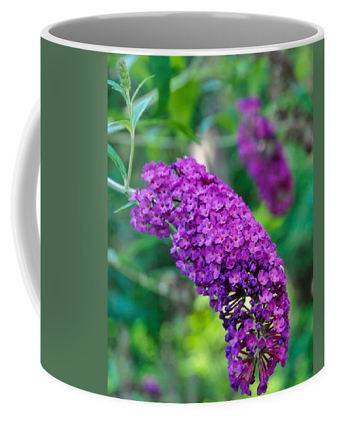 Garden Coffee Mug featuring the photograph Butterfly Bush Garden Flower by Ginger Wakem