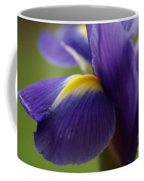 Purple Coffee Mug featuring the photograph Purple Iris 8 by Carol Lynch