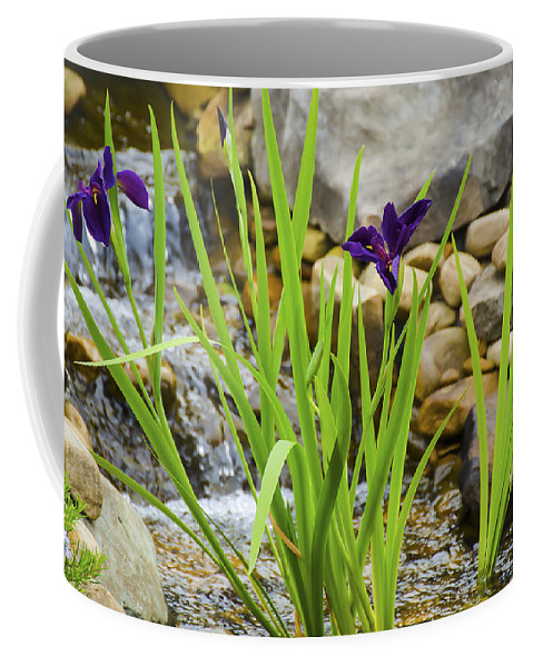 Flowers Coffee Mug featuring the photograph Purple Irises Growing In Waterfall by Penny Lisowski