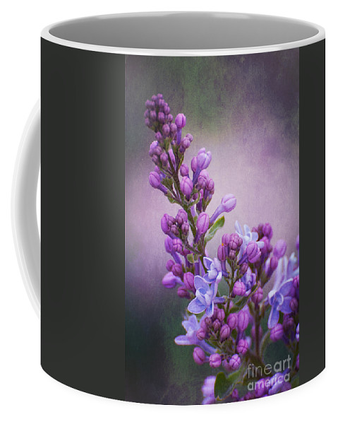 Lilac Coffee Mug featuring the photograph Purple Lilacs by Bianca Nadeau
