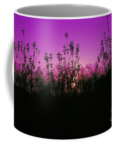 Purple Coffee Mug featuring the photograph Purple Paradise Sunset By Diana Sainz by Diana Raquel Sainz