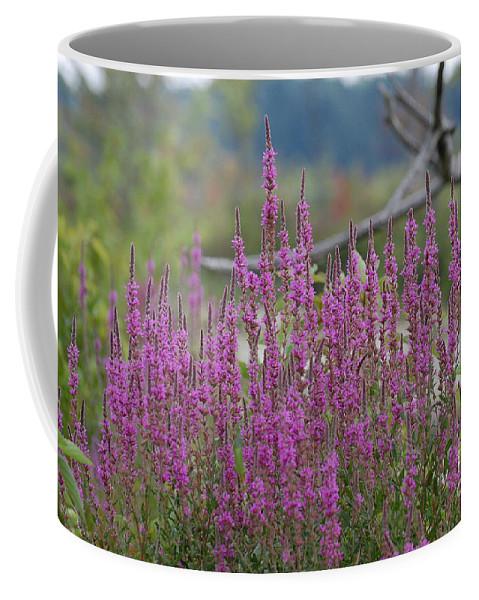Flowers Coffee Mug featuring the photograph Purple Pleasures by Bianca Nadeau