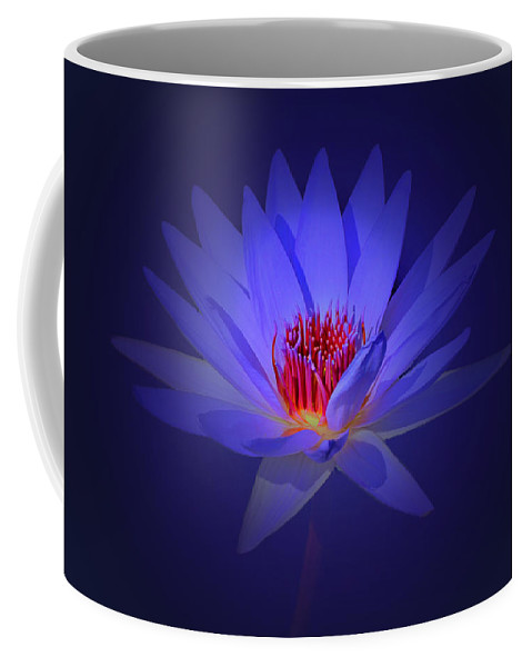 Flower Coffee Mug featuring the photograph Purple Water Lily by John Absher