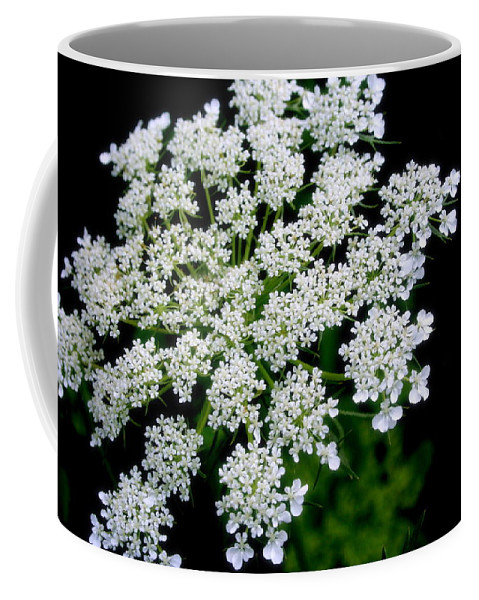 Nature Coffee Mug featuring the photograph Queen Anne's Lace by Kay Novy