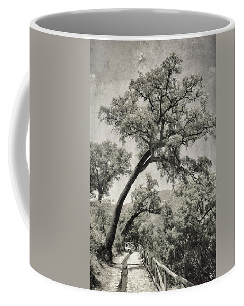 Quercus Suber Coffee Mug featuring the photograph Quercus Suber Retro by Guido Montanes Castillo