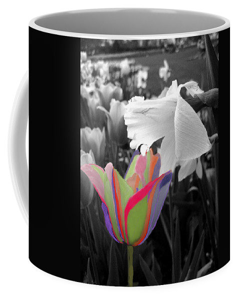 Bright Colored Tumlips Coffee Mug featuring the photograph Quilted-look Tulip Gets A Nod From A Daffodil by Pamela Smale Williams