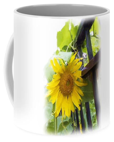 Sunflower Coffee Mug featuring the photograph Railed Sunflower by Alice Gipson