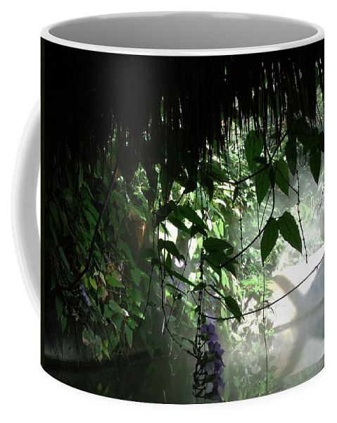 Rain Forest Coffee Mug featuring the photograph Rain Forest Overhang by Jared Best