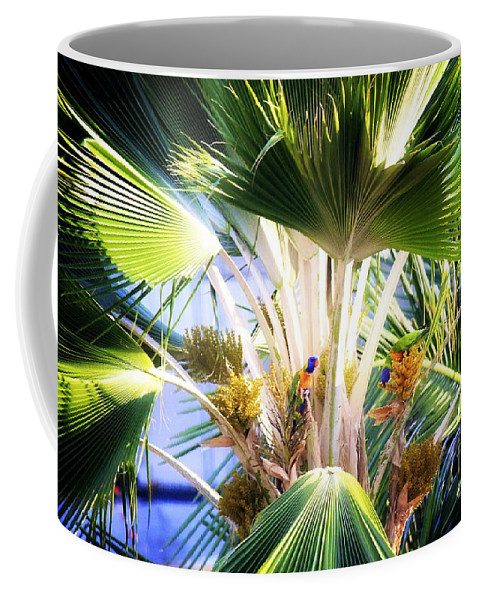 Palm Tree Coffee Mug featuring the photograph Rainbow Lorikeets by Alanna DPhoto