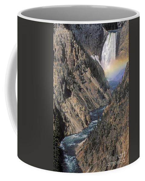 Yellowstone;waterfall; Coffee Mug featuring the photograph Rainbow On The Lower Falls by Sandra Bronstein