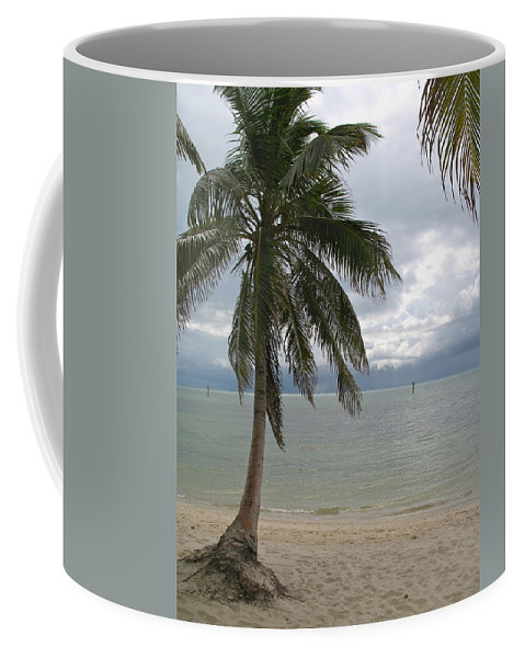 Rain Coffee Mug featuring the photograph Rainy Day In Paradise by Christiane Schulze Art And Photography