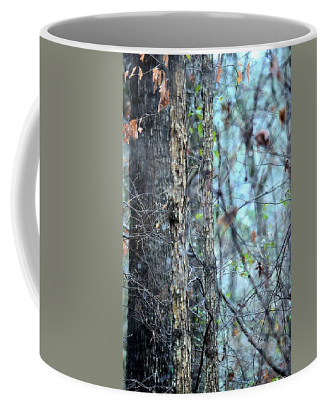 Rainy Day In The Forest Coffee Mug featuring the photograph Rainy Day In The Forest by Maria Urso
