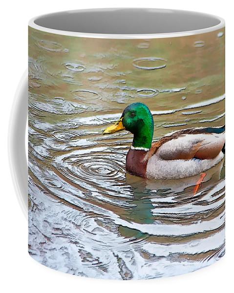 Dan Sabin Coffee Mug featuring the photograph Rainy Day Mallard by Dan Sabin