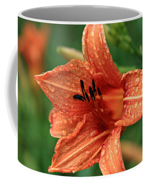 Flowers Coffee Mug featuring the photograph Rainy Day by Reid Callaway