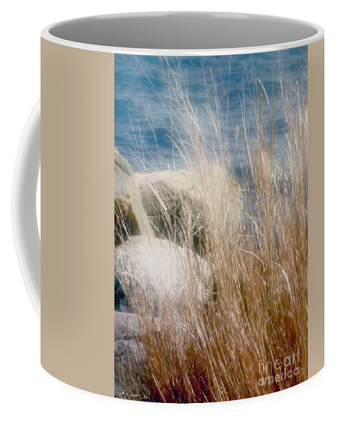 Reeds Coffee Mug featuring the photograph Rapunzel Reeds by RC DeWinter