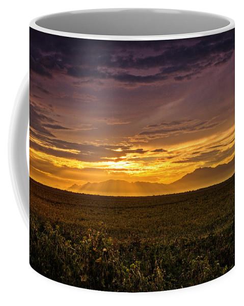 Sunset Coffee Mug featuring the photograph Rays Of Hope by Saija Lehtonen