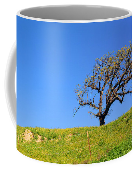 Hill Coffee Mug featuring the photograph Reach by Clayton Bruster