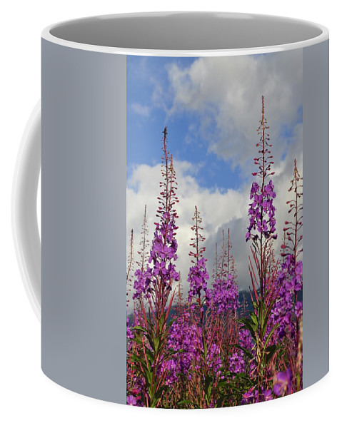 Fireweed Coffee Mug featuring the photograph Reach For The Sky by Cathy Mahnke