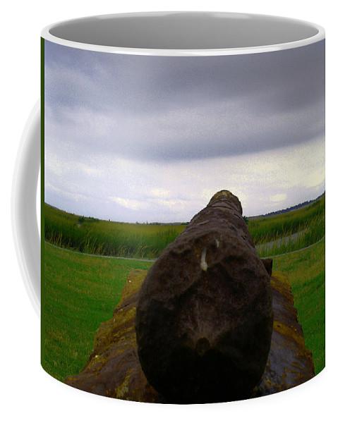 Spanish Coffee Mug featuring the photograph Ready -- Aim -- Fire by Bob Johnson